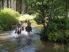 Ausritt bem Highlander Ranch Reiterhof in Spiegelau im Bayerischen Wald