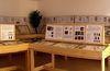 Übersichtliche Darstellung bei der Käferausstellung in Spiegelau