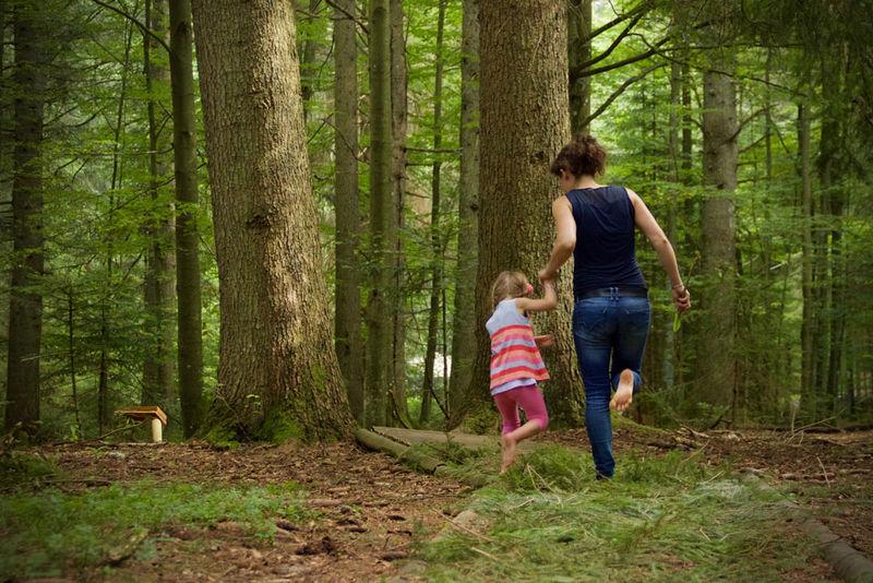 Barfusspfad Naturerlebnispfad am Waldspielgelände Spiegelau