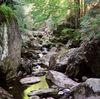 Naturjuwel wildromantische Steinklamm in Spiegelau