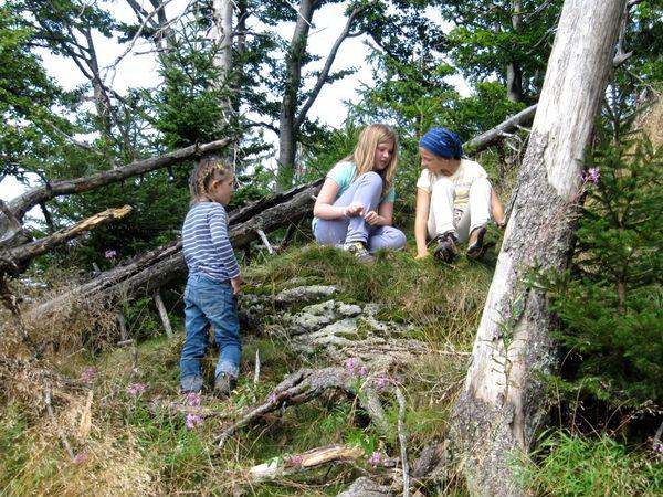 Kinderspaß bei einer Zauberwald-Entdeckungstour mit WaldZeit in der Nationalpark-Wildnis