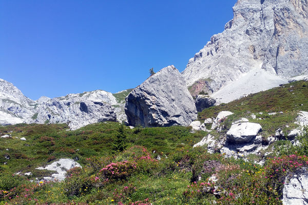 Familien Klettergarten Partnunsee