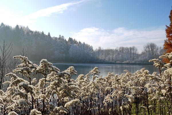 Glashütter Weiher bei St. Ingbert im Winter