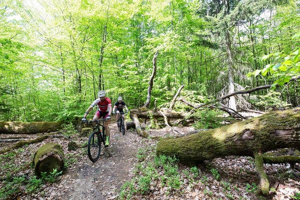 Mountainbiker auf der PUR in und um St. Ingbert