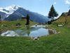 Idyllischer Bergsee Jungen Alp im Sommer
