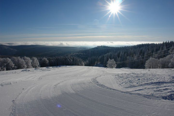 Kandel Natur im Winter