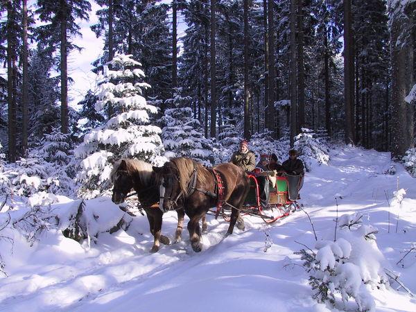 Durch die Winterlandschaft von St. Peter