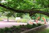 Deutsch Französischer Garten Saarbrücken