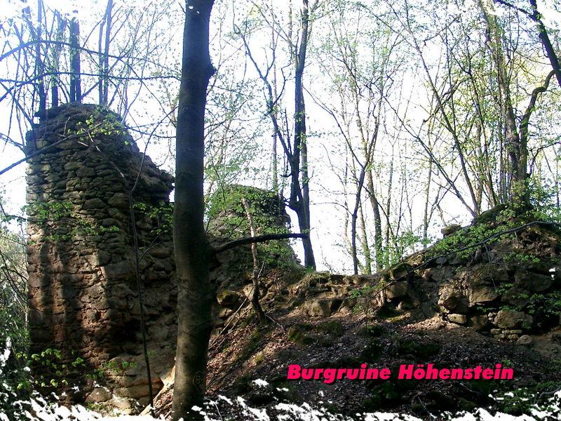 Mauerreste der Burgruine Höhenstein bei Stallwang im Vorderen Bayerischen Wald