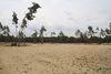 Bugker Sahara, Foto: Melina Krahl, Lizenz: Seenland Oder-Spree