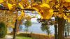 Herbst im Schlosspark Hubertushöhe, Foto: Angelika Laslo