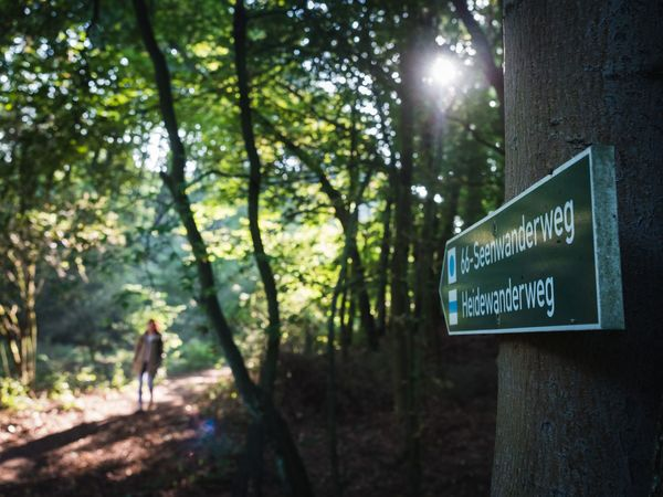 auf dem 66-Seen-Wanderweg im Annatal, Foto: Christoph Creutzburg, Lizenz: Seenland Oder-Spree