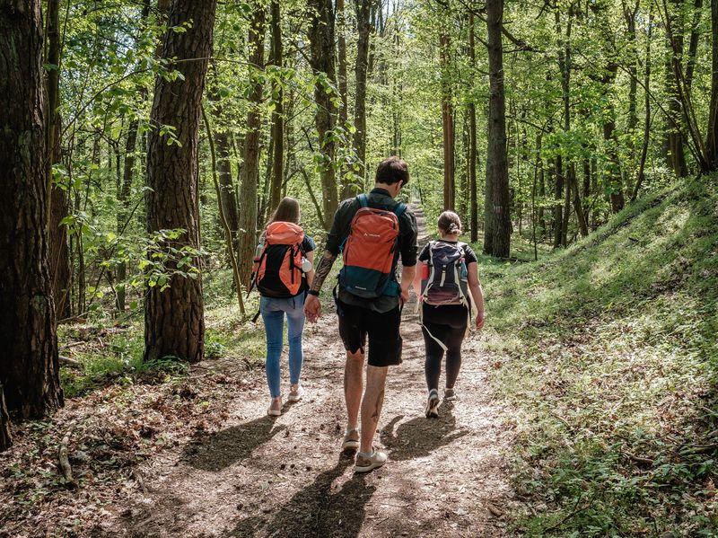 Durch das Naturidyll Lange Dammwiesen und zum Stienitzsee - Spätaufsteher-Tour