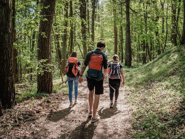 Wanderung Lange Dammwiesen, Foto: Christoph Creutzburg , Lizenz: Seenland Oder-Spree