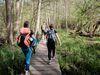 Wanderung am Stienitzsee, Foto: Christoph Creuzburg , Lizenz: Seenland Oder-Spree