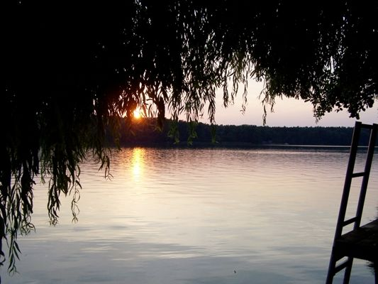 Am Straussee, Foto: E. Bräunling