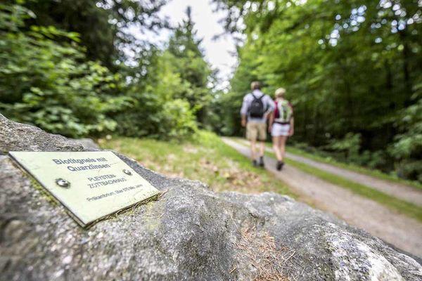 Geologischer Lehrpfad bei Tännesberg im Oberpfälzer Wald.