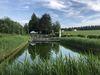 Naturwaldbad Tiefenbach