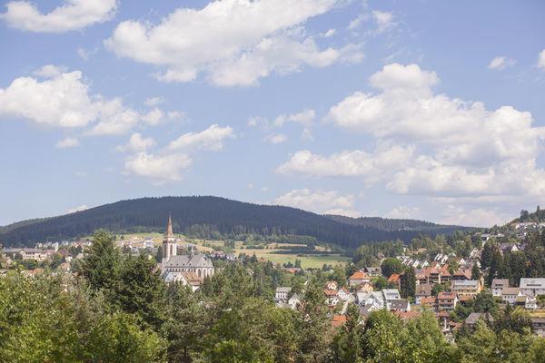 Infopoint Neustadt Schwarzwald Tourismus Gmbh