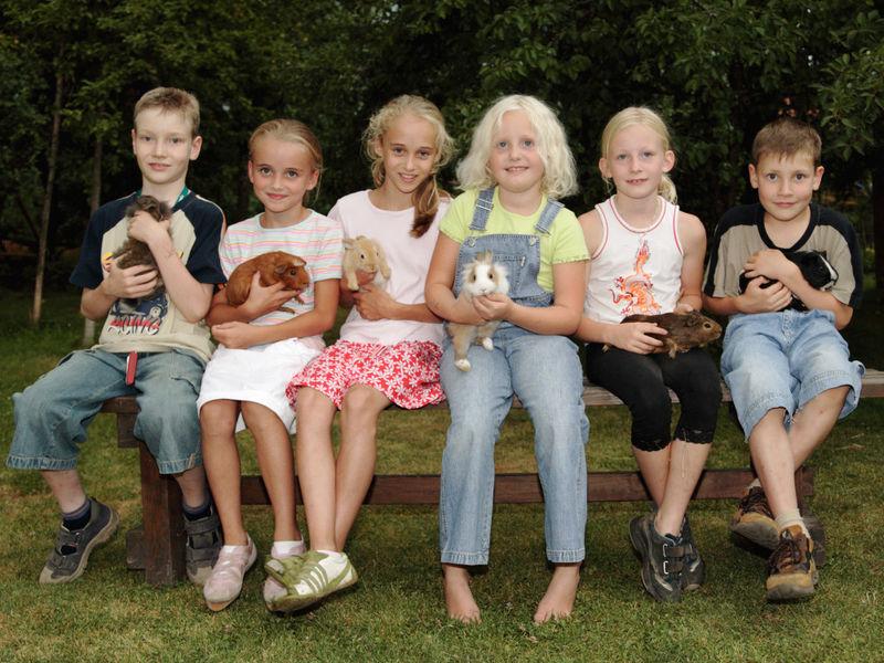 Kinderspaß mit Haustieren auf dem Endlhof bei Tittling im Bayerischen Wald