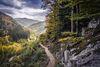 Weg zum Todtnauer Wasserfall