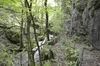 Walderlebnispfad in Todtnau