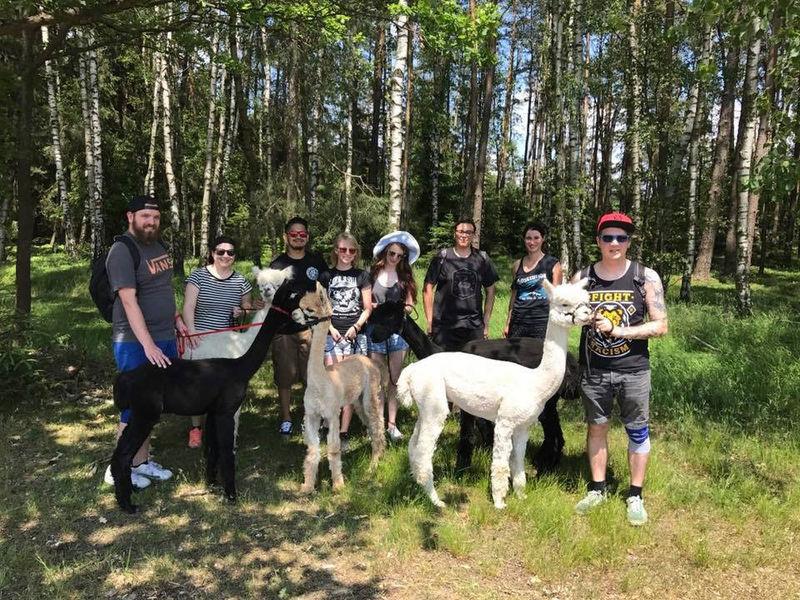Mit den Sun Star Alpacas durch den Bayerischen Wald wandern