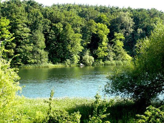 Trebuser See, Foto: Tourismusverband Seenland Oder-Spree e.V./Christopher Heinrich