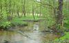 Naturpark Schlaubetal bei Bremsdorf (c) Archiv LUGV