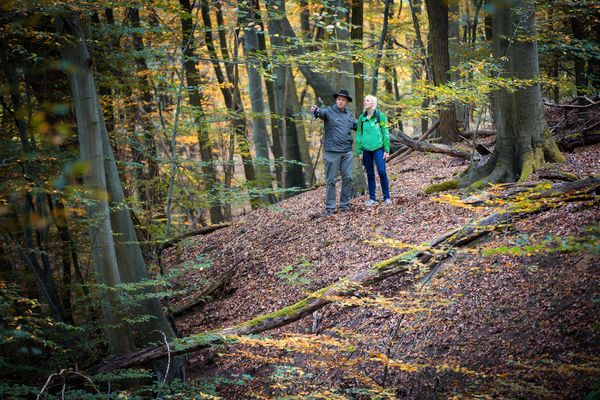 Wanderung Naturpark Schlaubetal, Foto: Florian Läufer