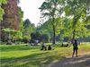 Stadtnahe Grünoase. Der Alte Botanische Garten