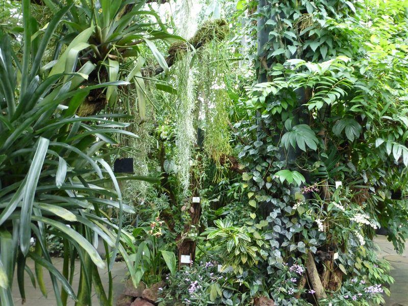 Botanischer Garten Der Universität Tübingen Urlaubsland Baden