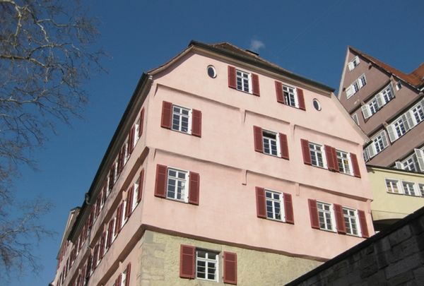 Buse in Tübingen