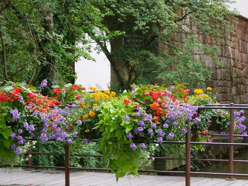 Blumenschmuck an der Krummen Brücke