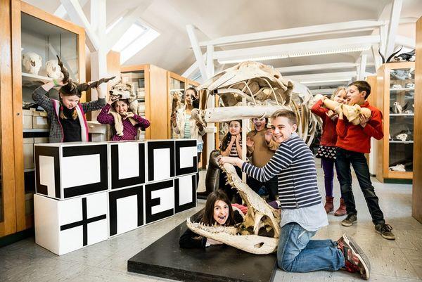 In der Paläontologie