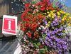 Touristinformation Tübingen