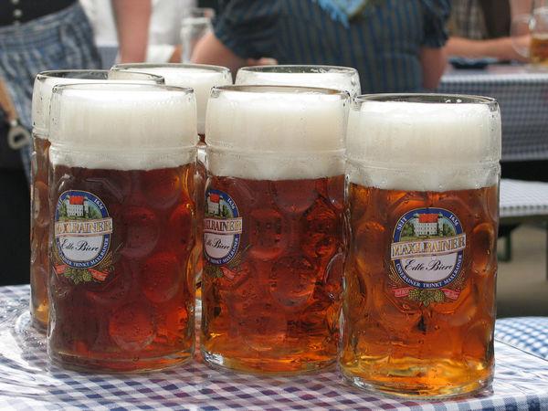 Sechs Maß Bier auf der Bierbank.