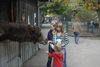 Kamelfütterung auf dem Haustierhof Reutemühle in Überlingen