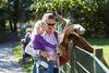 Tierischer Spaß auf dem Haustierhof Reutemühle in Überlingen
