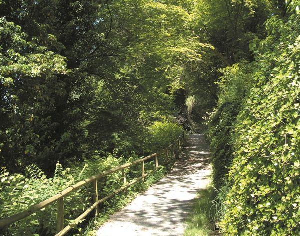 Scheffelhöhe in Überlingen am Bodensee