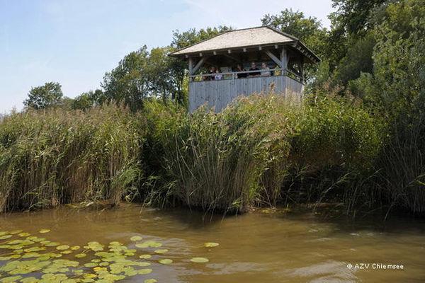 Blick vom Wasser auf den Beobachtungsturm Lachsgang.