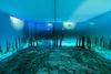 Unterwasserwelt im ARCHAEORAMA