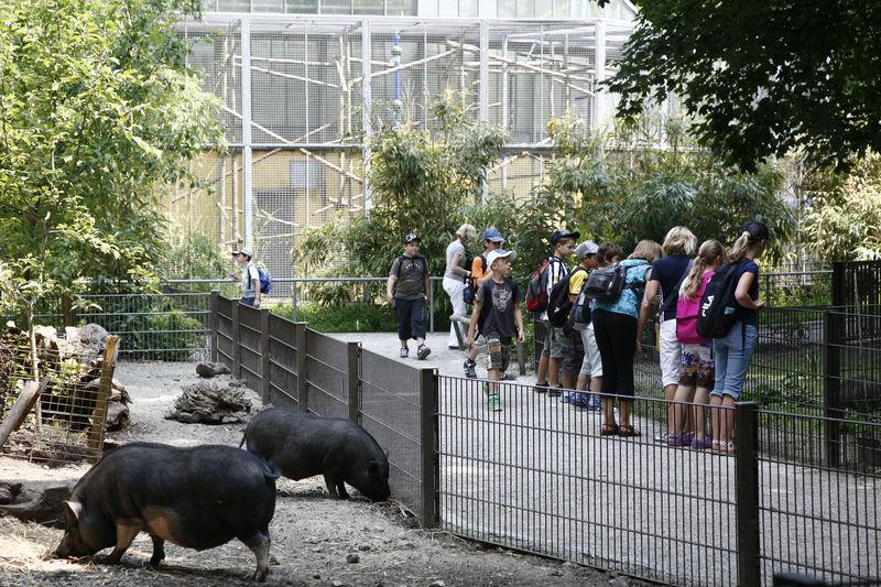 Ulmer Tiergarten