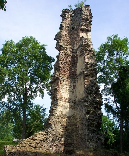 Die Überreste der Burg Neujochenstein bei Untergriesbach