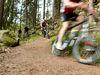 Mountainbike-Trail durch den Bayerischen Wald