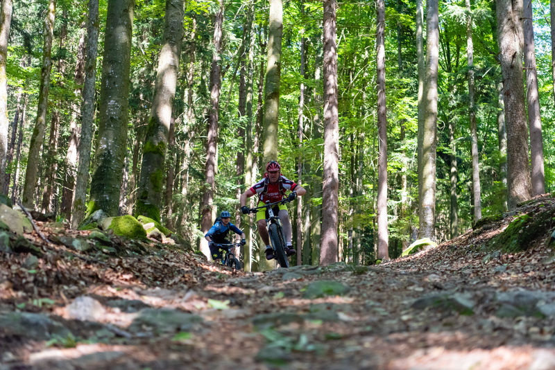 Geführte MTB Touren im Bayerischen Wald mit Bayerwald Bike