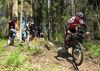 Fahrtechniktraining mit Bayerwald Bike