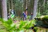 Geführte MTB-Tour mit Bayerwald Bike