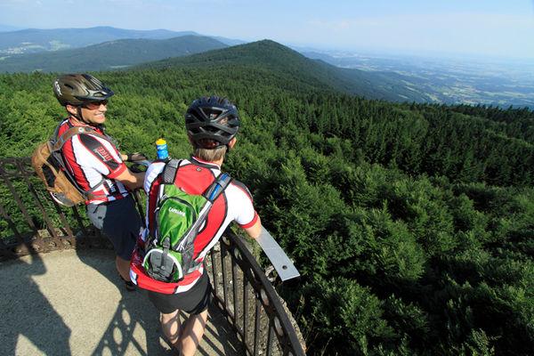 Blick vom Hirschenstein bei einer Mountainbiketour mit Bayerwald Bike