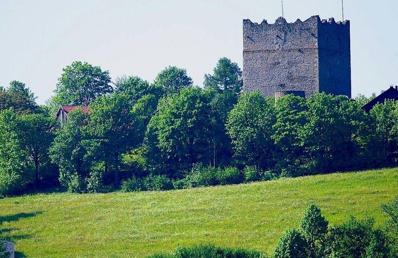 Blick auf die Burgruine Neunußberg bei Viechtach im ARBERLAND Bayerischer Wald